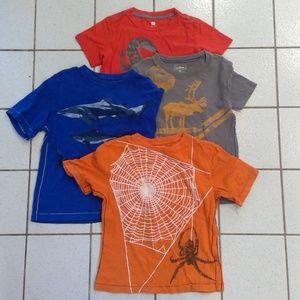 Lot of 4 Boys T Shirts Size 8 L.L. Bean and Tea